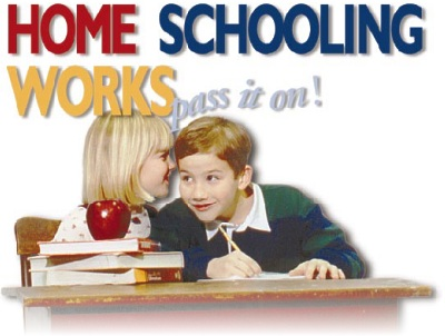 Home schooling - what do you think of it?